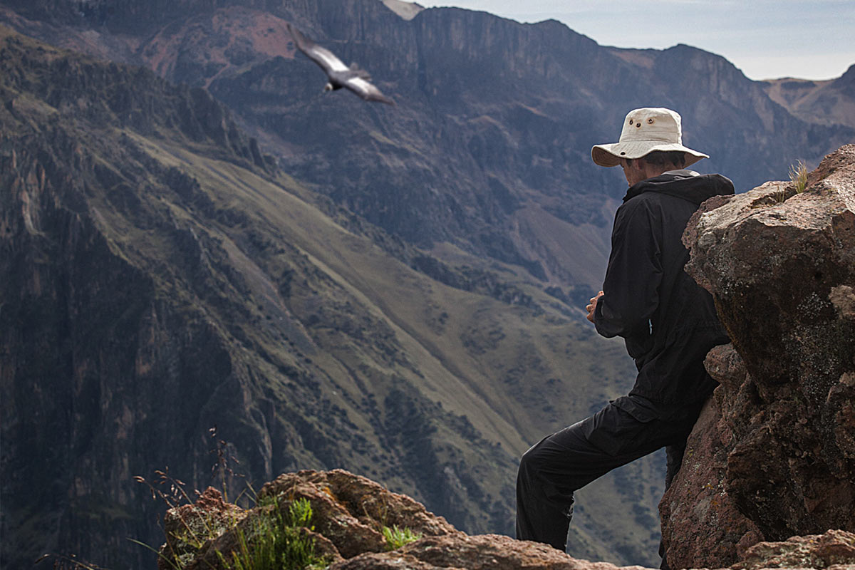 Tourist wearing a hat looking out at a condor flying over Colca Canyon.