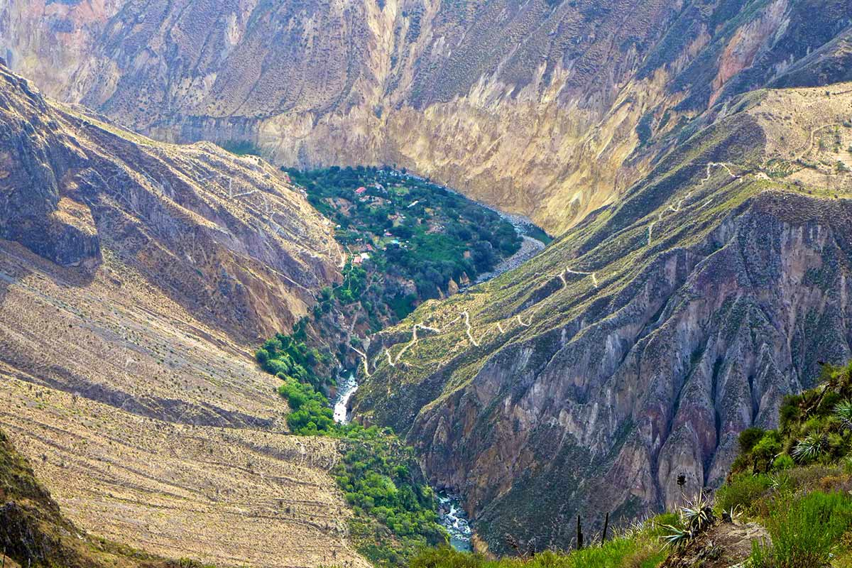 Looking down at the green Sangalle Oasis tucked between canyon walls of Colca.