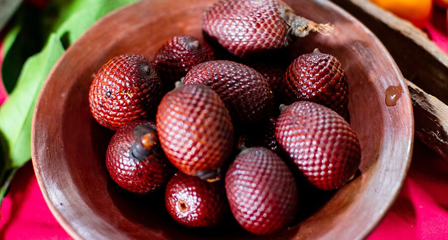 A bowl filled with small brown rigged fruits from the Amazon Rainforest.