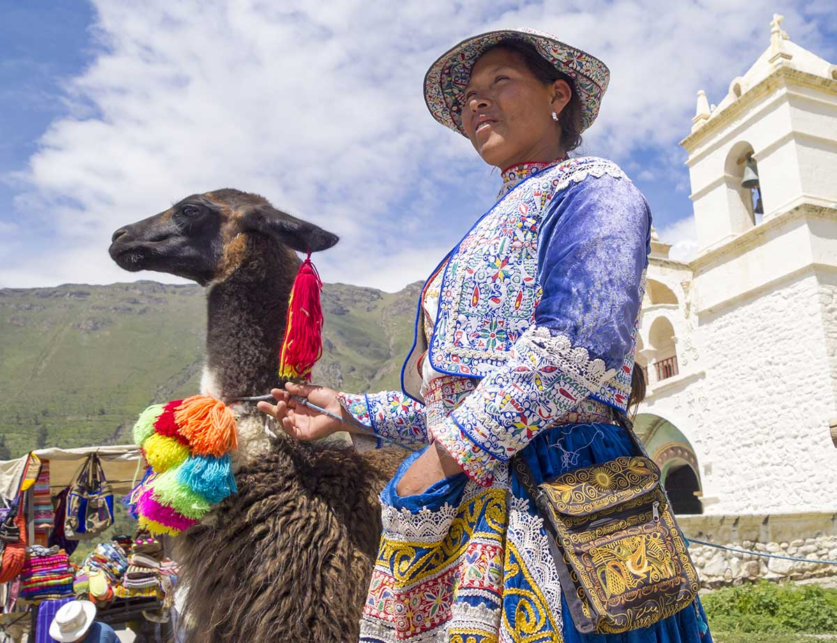 An Andean woman in a blue, embroidered vest and skirt holds a brown llama wearing colorful pompoms.
