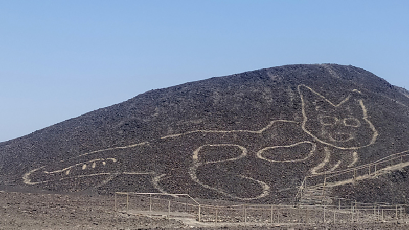A mound with an etching of a cat relaxing and laying belly up. The geoglyph is over 2,000 years old