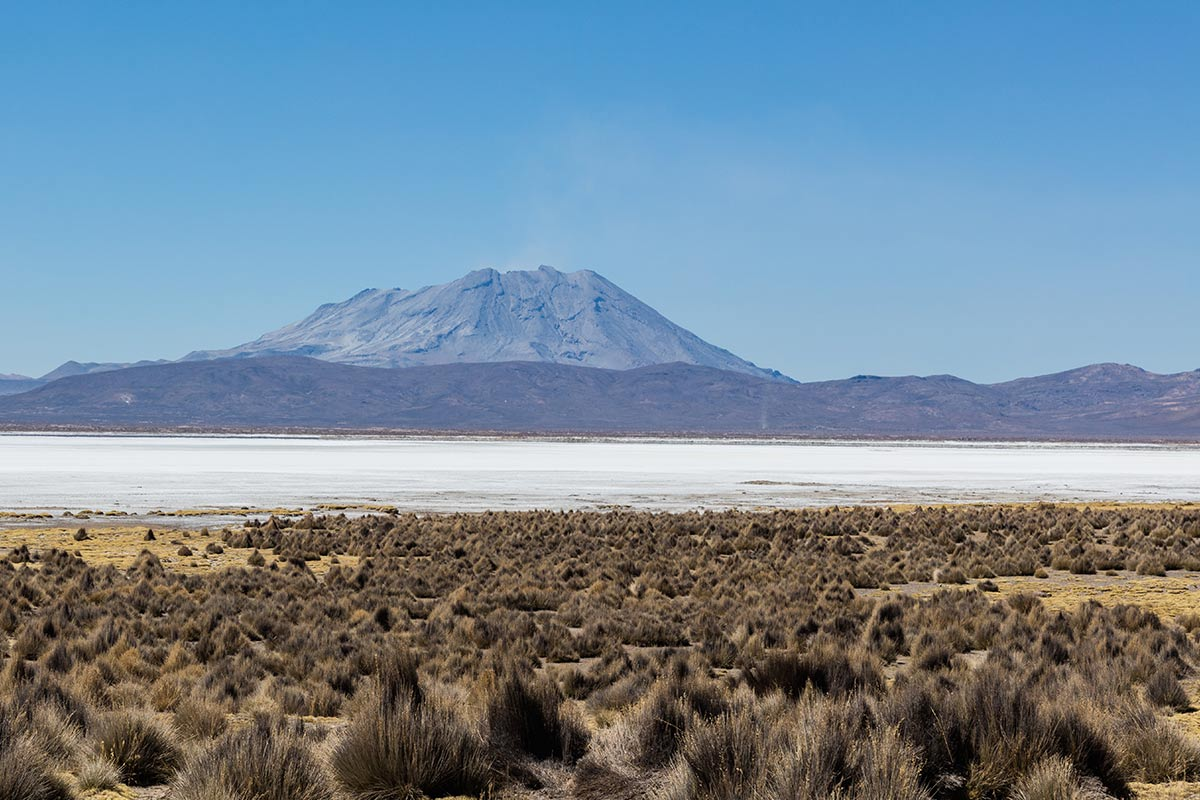 Ubinas Volcano towering in the background of the white Salinas Lake surrounded by highland shrubs.