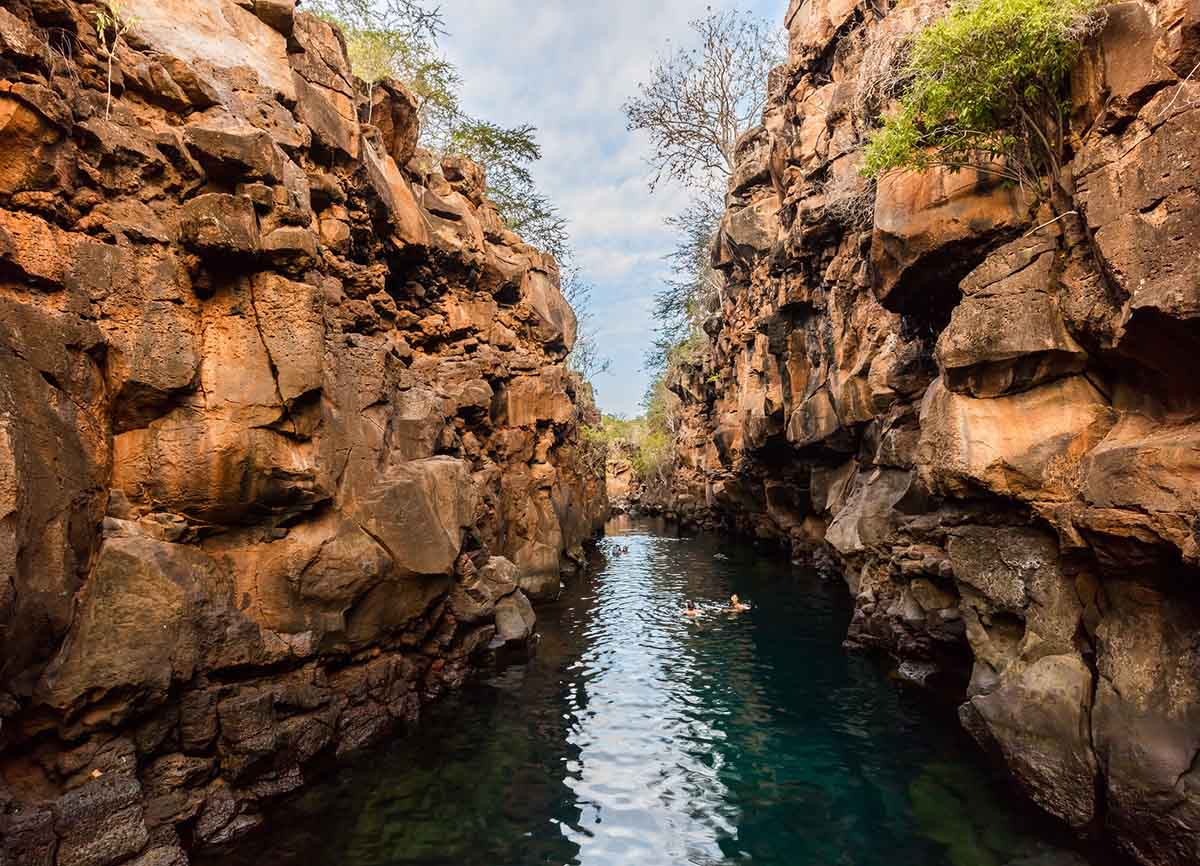Swimmers in a clear thin river between two rock cliff walls.