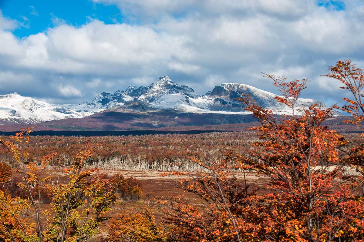 Fall foliage in Tierra del Fuego National Park with snow-capped mountains.