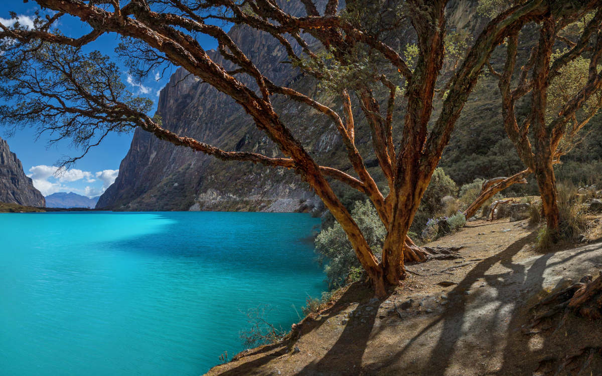 The bright turquoise waters of Laguna 69 with mossy trees and mountains surrounding it.