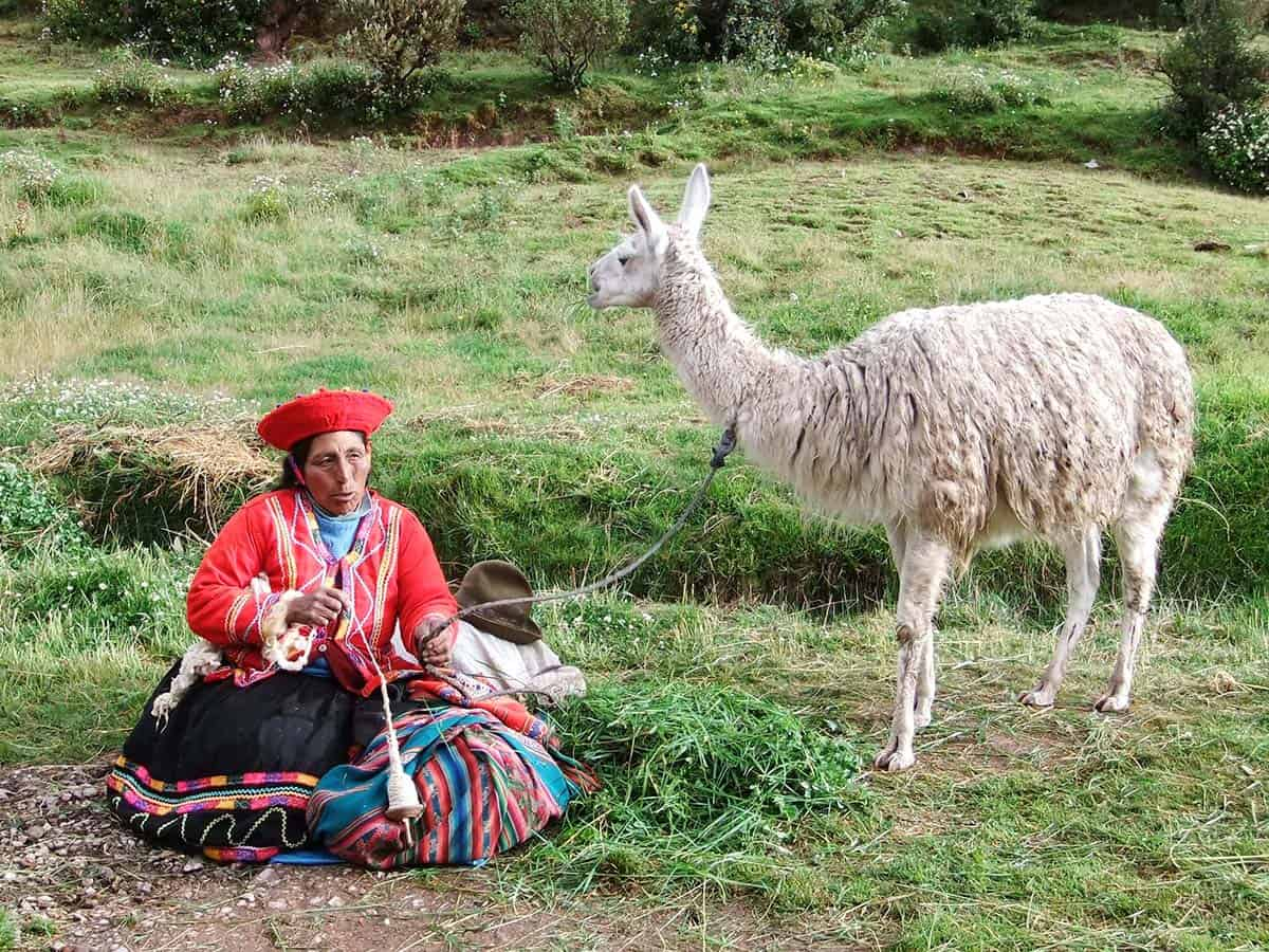 Native Quechua woman with a llama in Peru's Sacred Valley