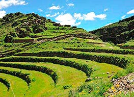 Terraces covered in green grass along the Chacan trek