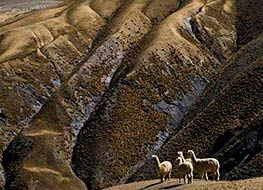 Huchuy Qosqo picture, Peru travel, Peru For Less