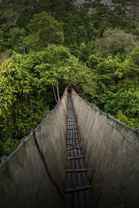 Custom 9 Day Machu Picchu Amazon Tour Peru For Less