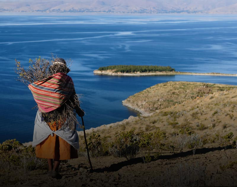An indigenous woman carries a bundle of sticks near the shore of an island in Lake Titicaca.