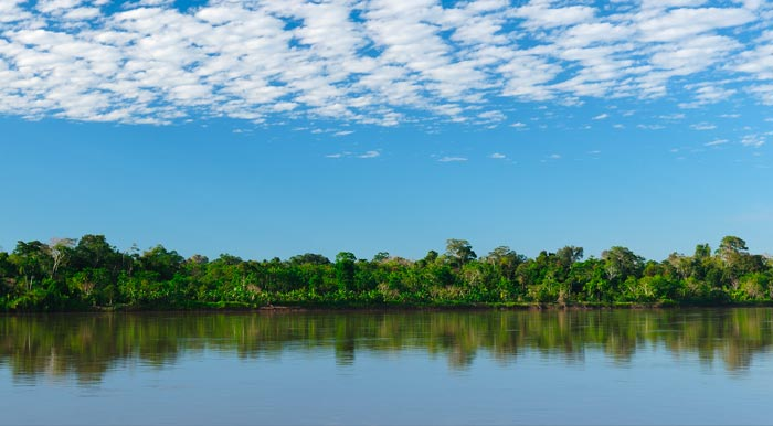 A river surrounded by tropical rainforest underneath a partly cloudy sky in the Peruvian Amazon.