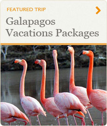 Galapagos Vacations Packages