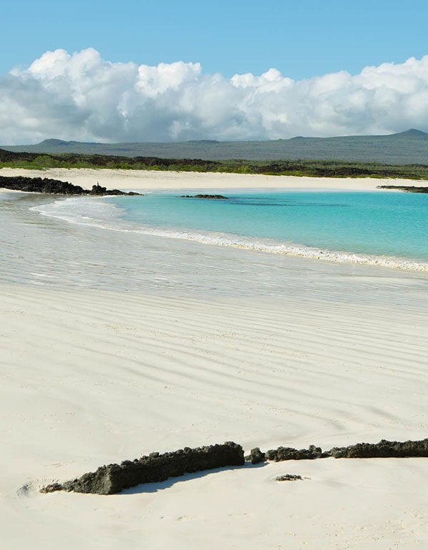 View of a beach of the Galapagos Island