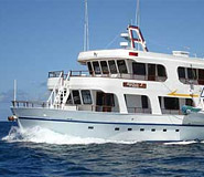 Angelito picture, Galapagos cruises, Peru For Less