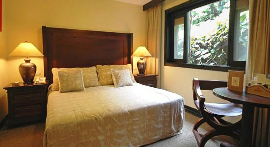 Single room with view of trees outside | Sanctuary Lodge | Peru for Less