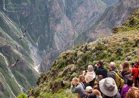 Travelers watching condors flying over the Colca Canyon below