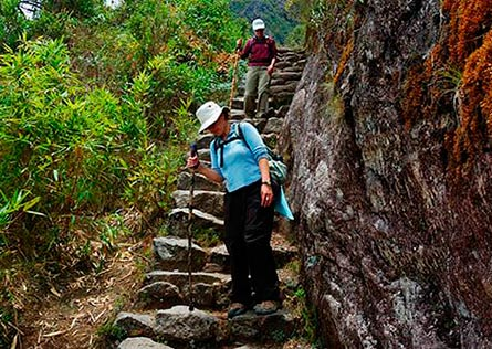 Hikers with walking sticks walking down Inca Trail stone steps
