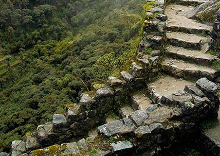 Steep stone uphill steps along the Inca Trail
