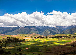 Patches of green farm land in the Sacred Valley with mountains behind
