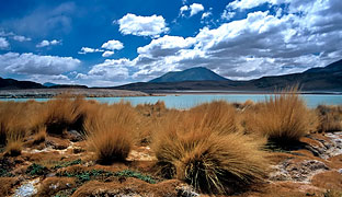 More information on the Andean Treasures and Bolivia Highlights vacation package