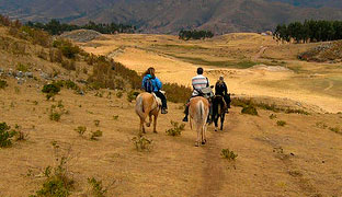 More information on horseback riding tours