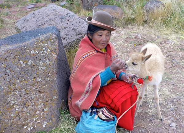 A woman sits with her alpaca while she sells candy and trinkets to visitors, Sillustani, Peru