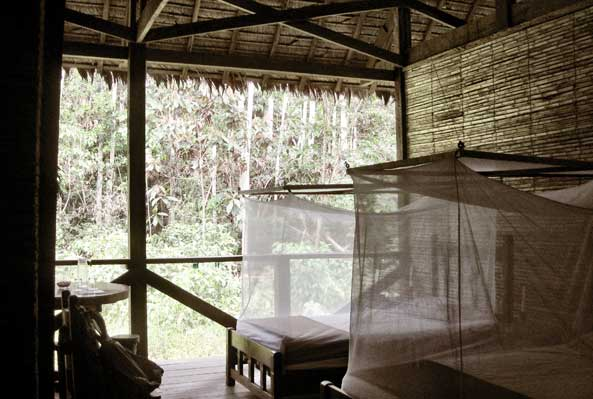Beds of the Refugio Amazonas Lodge, open to the outdoors and protected by mosquito netting